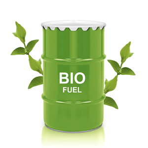 Biofuels Part Three - Biomass and Future Fuels | yelloblu